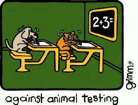 Against animal experimentation research paper